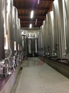Over 10,000 gallons of Pinot Noir.